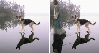 Med och utan Photoshop: här kommer Internets roligaste fotomontage!