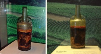 De romeinen bottelden deze fles in 350 v.Chr en is daarmee de oudste verzegelde wijnfles ter wereld