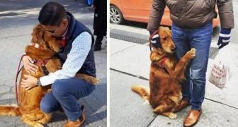 Deze hond is in de hele wijk bekend vanwege haar bijzondere passie: voorbijgangers omhelzen