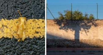 Gira il mondo fotografando le coincidenze della realtà: il risultato è un piacere per gli occhi