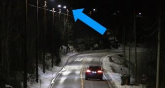 Questi lampioni intelligenti riducono drasticamente il consumo di energia: ecco come funzionano