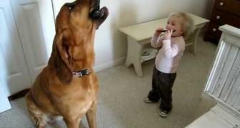 Kind und Hund bei einer freien Bluesinterpretation...