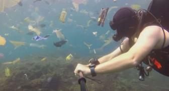 S'immerge con la videocamera nelle acque di Bali: la quantità di plastica che pervade il mare è da brividi