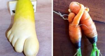 Estas hortalizas parecen toda otra cosa: tendrias el coraje de comerlos?