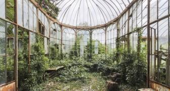 Von der Natur zurück erobert: Ein Fotograf zeigt uns die Schönheit verlassener Orte