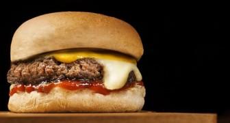 Wenn du Fastfood isst, reagiert dein Körper wie bei einer bakteriellen Infektion: Hier die Studie
