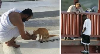 Estas 22 imagens potentes demonstram que a gentileza deixa o mundo mais bonito