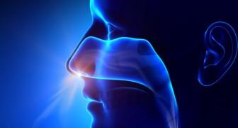 Ti capita di soffrire di ansia? Ecco 6 tecniche di respirazione con le quali puoi alleviarla all'istante