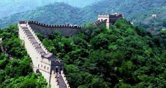 In 5 jaar heeft China bomen geplant in een gebied dat groter is dan Italië