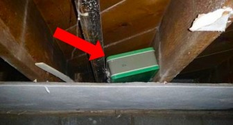 Er findet einen Koffer bei der Renovierung seines Hauses: als er ihn öffnet, erkennt er, was für ein Glück er gehabt hat