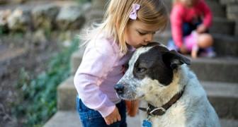 Les animaux ? Ils sont bénéfiques pour les enfants car ils les aident à grandir avec plus de sérénité et confiance en soi