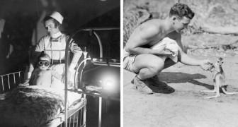 21 Fotos die uns historische Fakten aus einem ungewohnten Blickwinkel zeigen
