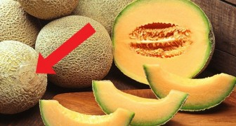 Alguns conselhos úteis para escolher um melão maduro e doce