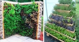Jardins verticais: 17 ideias maravilhosas para você escolher