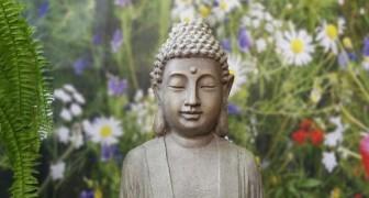 As 12 leis do carma que você deve conhecer para viver melhor e em harmonia com o próximo