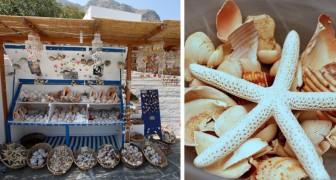 Se ami davvero il mare, non dovresti MAI acquistare souvenir fatti con creature marine: ecco perché