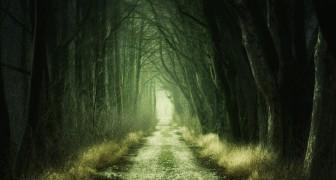Korte Freudiaanse test: wat zit er verborgen in je onderbewustzijn?