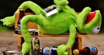 Quando scoprirai come reagisce il cervello all'alcol non ne vorrai più bere neanche un bicchiere