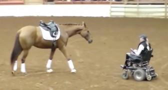 Un caballo se acerca a una mujer sobre la silla de ruedas: el espectaculo que sigue4 atrapa al publico