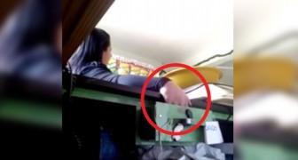 Roubava dinheiro do caixa, então os proprietários colocaram uma pequena armadilha para ratos: veja o momento da descoberta