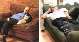 Den här 75-åriga volontären besöker katthemmet varje dag... och tar en tupplur tillsammans med dem