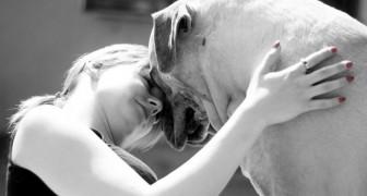 Falar com os próprios animais domésticos é sinal de grande inteligência!