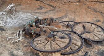 Le ruspe di un cantiere edile portano alla luce un carro risalente all'Età del Ferro con tanto di cavalli