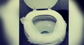 Você também cobre a tampa do vaso sanitário público com papel higiênico? Veja por que você não deveria fazer isso...