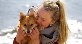 Les gens ont tendance à aimer les chiens plus que les humains : une étude le confirme