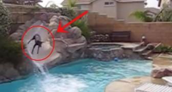 Das unglaubliche Verhalten eines Dobermanns auf der Wasserrutsche
