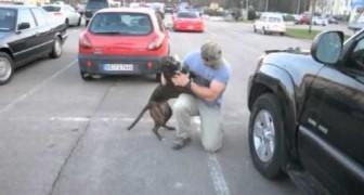 Un soldat revient de mission et son chien perd complètement le contrôle!