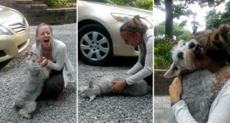 Lei torna a casa dopo due anni e il suo cane perde i sensi per la gioia