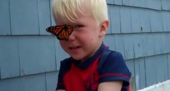 Sie entlassen einen wunderschönen Schmetterling in die Freiheit, doch dann passiert etwas unvorhergesehenes