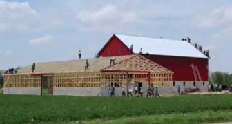 Great team work: this community builds a huge barn in 10 hours!