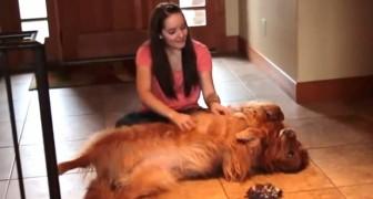 Una joven tiene poco tiempo para su perro, asi invierte en un GENIAL INVENTO