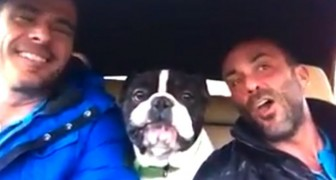 2 men sing their favorite song: what does the dog do? Well, It's his favorite song too !!!