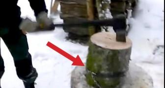 Ein Mann wickelt eine Kette um einen Baumstamm. Der Grund dafür ist GENIAL