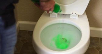 En man häller diskmedel i toaletten. Vänta ett par minuter och saken är klar!
