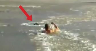 Der Hund ertrinkt in einem zugefrorenen See: Was dieser Mann tut, ist unvorstellbar
