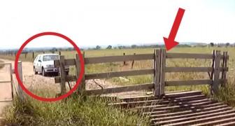 Sembra un normale cancello di legno, ma aspettate che la macchina si avvicini...