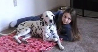 Papa sagt, dass sie für das Foto lächeln sollen: Was der Hund macht, wird euch zum Lachen bringen