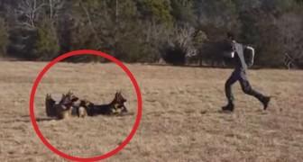 Il ordonne à son chien de ne pas bouger. Ce qu'il fait un peu plus tard est surprenant.