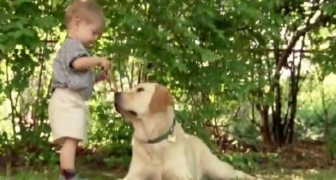 Onvoorstelbaar wat dit kind allemaal met zijn hond doet!