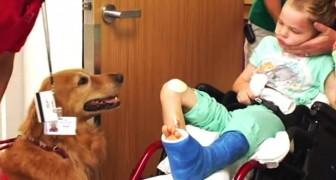 Svårt sjuka Caleb (6) testar djurterapi. Se resultatet!