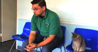 Il retrouve son chien après 8 ANS: sa réaction est magnifique!