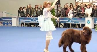 Hon börjar dansa, men hennes gigantiska hund får huvudrollen!