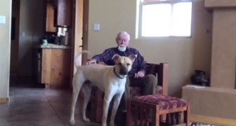 This man has Alzheimer's, and speaks with difficulty, but look what happens when he sees the dog ...