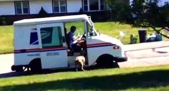 Le facteur arrive devant la maison : ce que fait ce chien est trop adorable :)