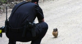 A police woman is on patrol: who she meets will change her day ... Wow !!!