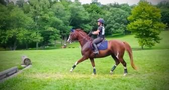 No começo o cavalo não consegue superar o obstáculo, mas quando encontra coragem... Uauuu!!!
